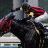 2016/6/12(日)東京11R エプソムC(GⅢ)出走予定馬の分析